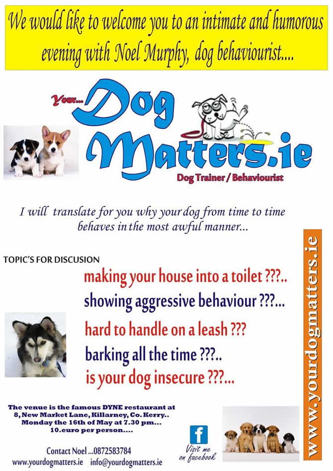 Your Dog Matters in Killarney